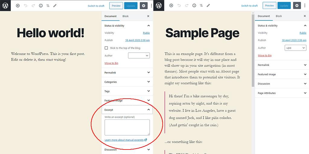 WordPress custom excerpt field
